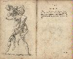 CheseldenAnatomy1773tab20.tif.jpg